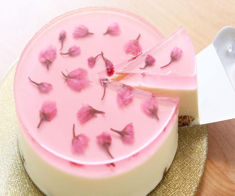 Bánh sakura cheese cake
